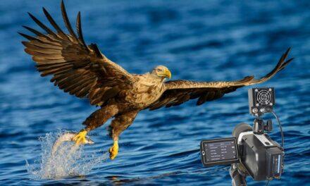 HS Vision Highspeed-Kamera macht Fehleranalyse einfach
