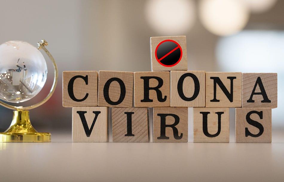 Kleines Virus, große Wirkung